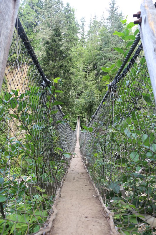 Looking back across the narrow suspension bridge