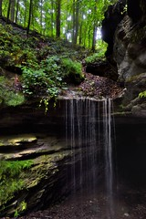 All on the Earth is Beauty Dressed (Mammoth Cave National Park)
