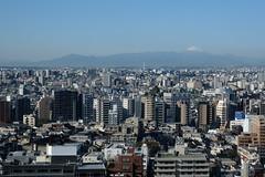 here, in Tokyo again