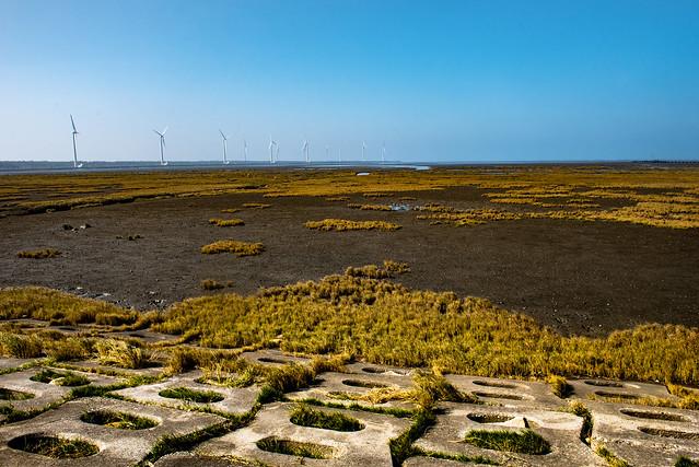 Gaomei Wetlands (高美濕地)