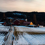 On the Farm (in explore)