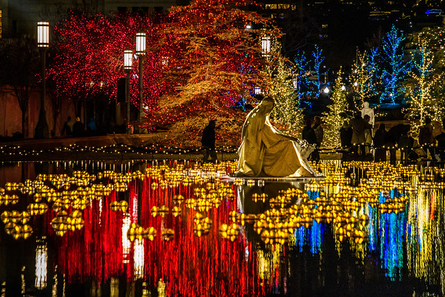 Christmas time Reflection Pond IMG_5080
