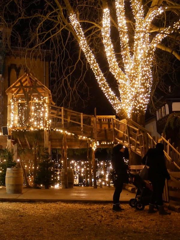 joulumarkkinat goslar eläimet