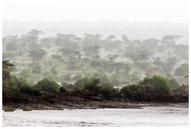 Samburu rain