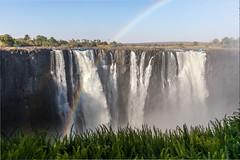 Victoria Falls (3)