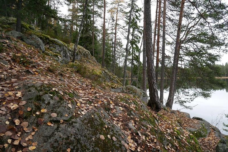 kattilajärvi espoo