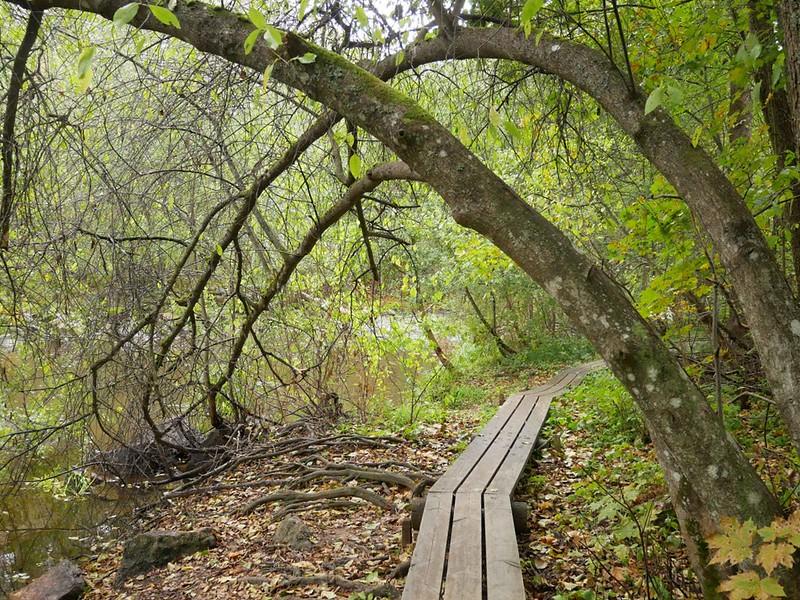 nukarinkoski pitkospuut