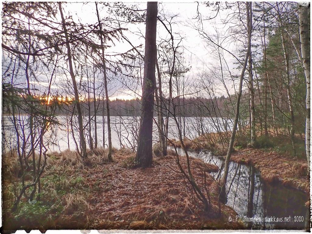 Tesomajärvi