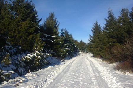 Podmínky pro běžky na horách