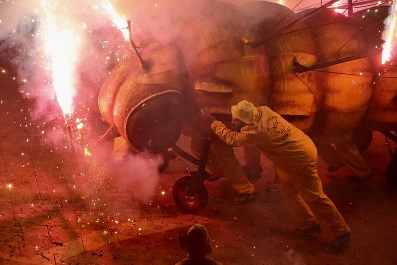 Fil·loxera Gran - Morro Foc Vermell