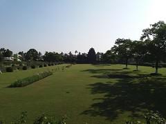 Rajarani Temple: distant view across the park