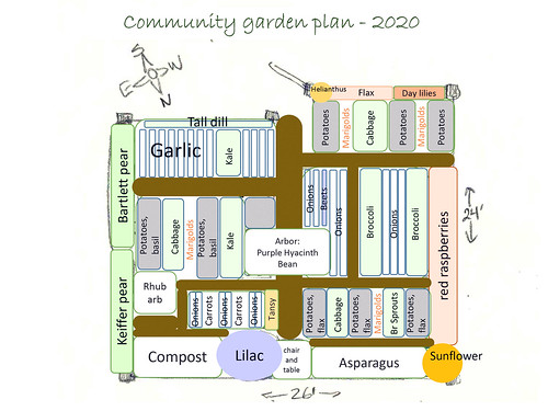 Microsoft PowerPoint - 2020 vegetable garden plans