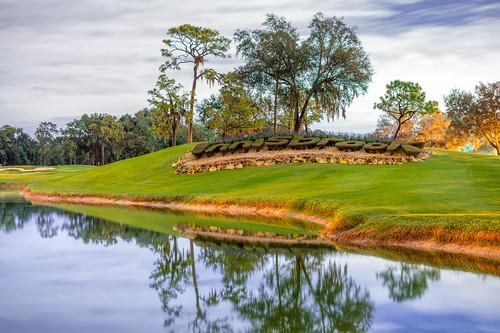 copperheadgolfcourse florida golfcourse golfresort golfing grass innisbrook innisbrookresort landscaping pga palmharbor reflection shrubs state valsparchampionship water unitedstatesofamerica