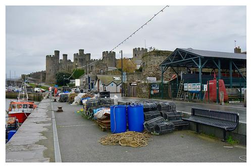gwynedd conwaycastle conway robindemel northwales quay harbour lobsterpots boats