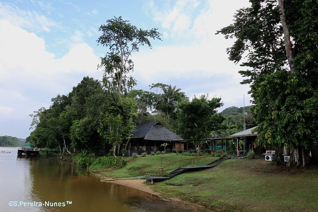 Bergendal Resort In the banks of Suriname River