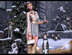 Kooky cat lady