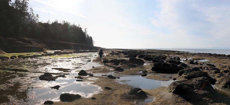 At low tide you can walk on these flat rocky areas