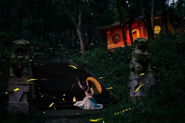 Fireflies in front of Doushuai Temple