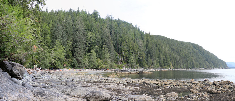The Thrasher Cove Campsite is along the shore on the left half of the photo