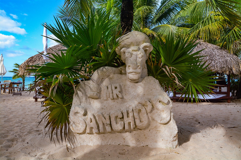 Mr. Sanchos