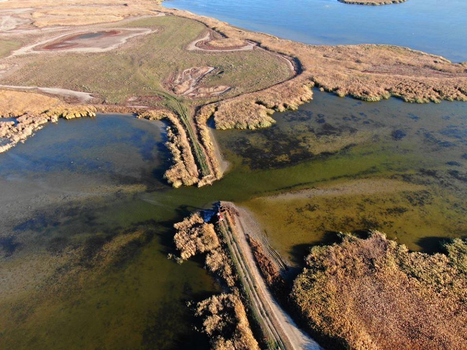 拆除中的烏克蘭水壩。照片來源:Rewilding Ukraine