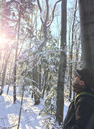 Jason and the snow