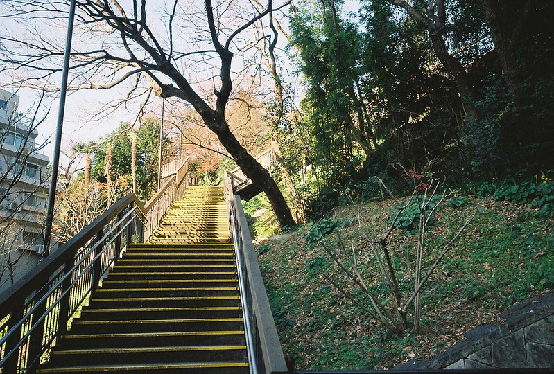 Ricoh GR1s+KodaK Ultramax400偽 東京いい道 しぶい道 三田聖坂 二本榎通り 亀塚公園から御田八幡神社に続く崖