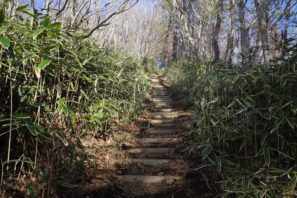 平尾山登山道