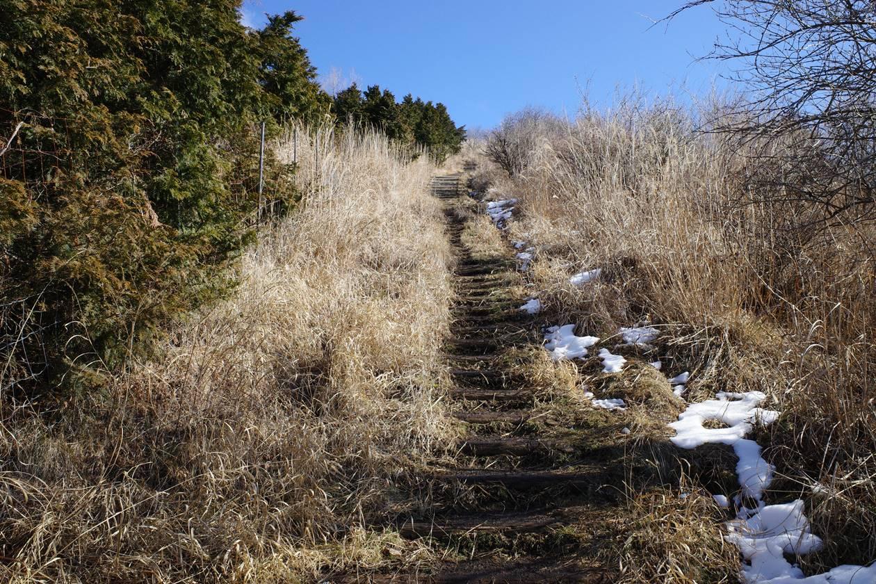 平尾山への登りの階段