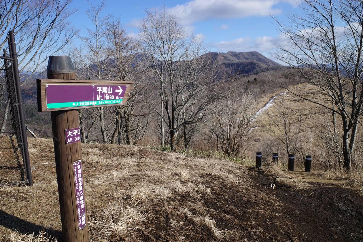 大平山から平尾山へ