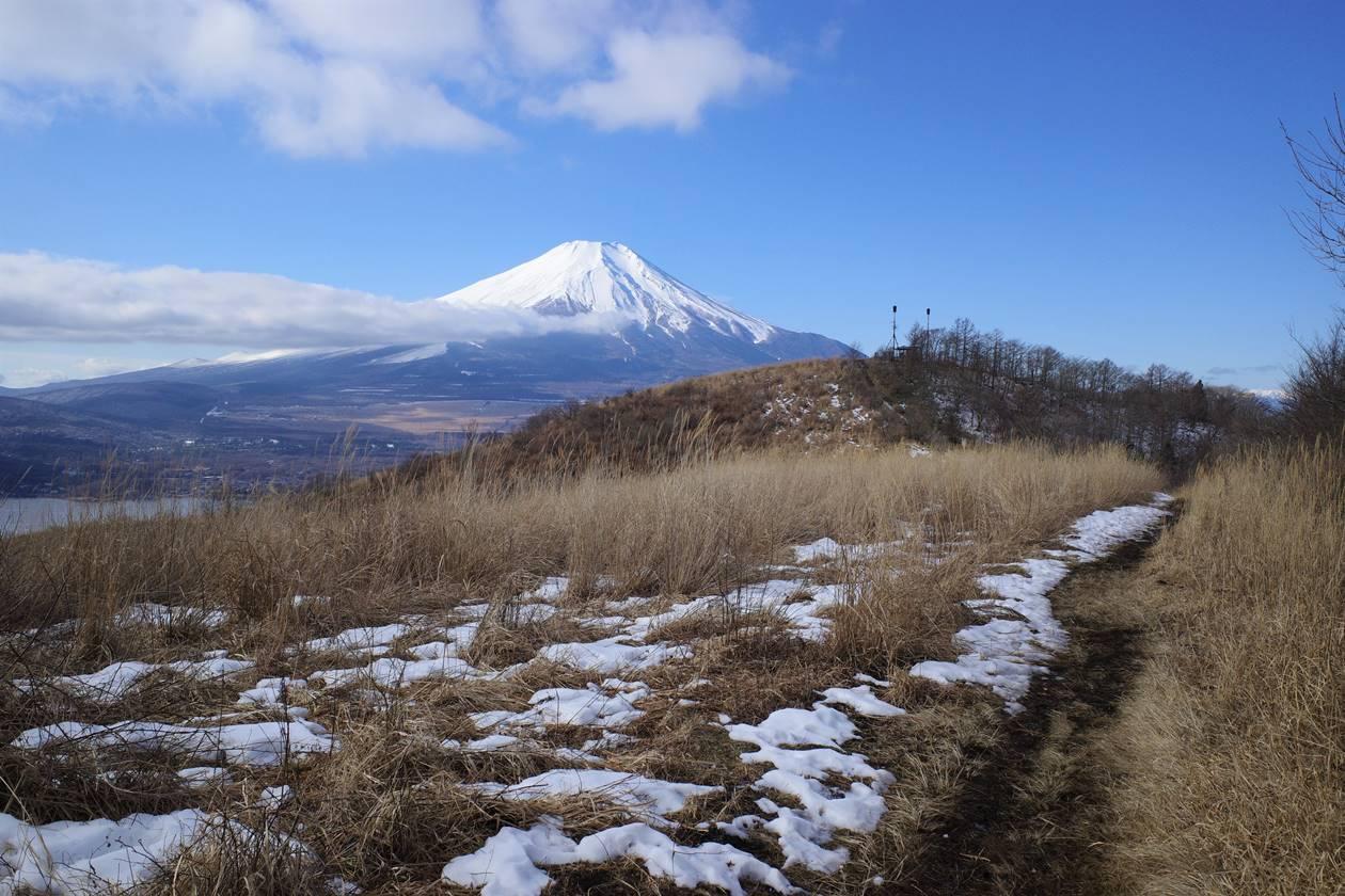 大平山 登山道の草原から眺める富士山