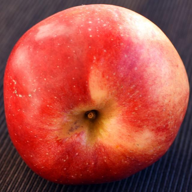 Der Apfel, die Lieblingsfrucht der Deutschen ... Brigitte Stolle