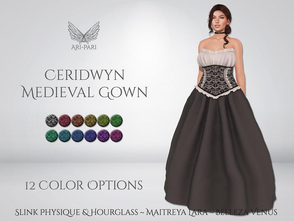[Ari-Pari] Ceridwyn Medieval Gown