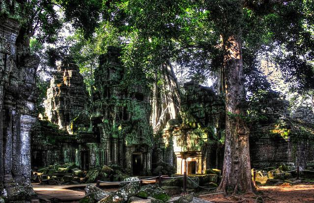 Siem Reap K - Ta Prohm 46