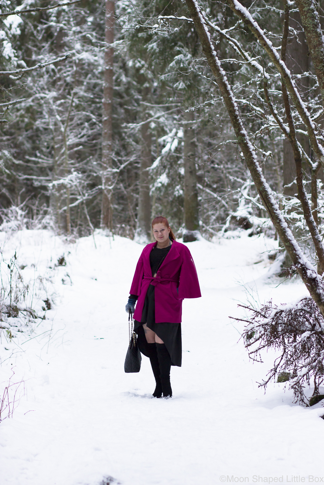 Talvimuoti-2019-asu