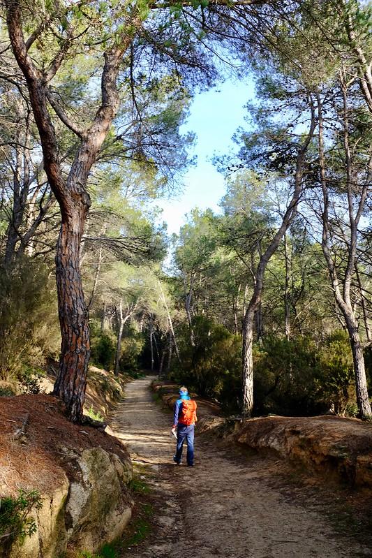Ruta prehistòrica, Roca del Vallès