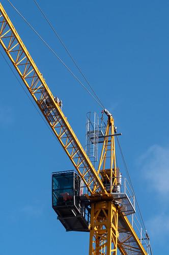 29. Crane/s (kasia_ociepa)