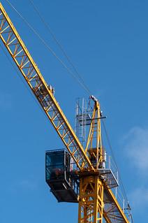 29. Crane/s