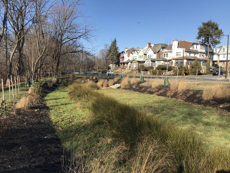Cobbs Creek project