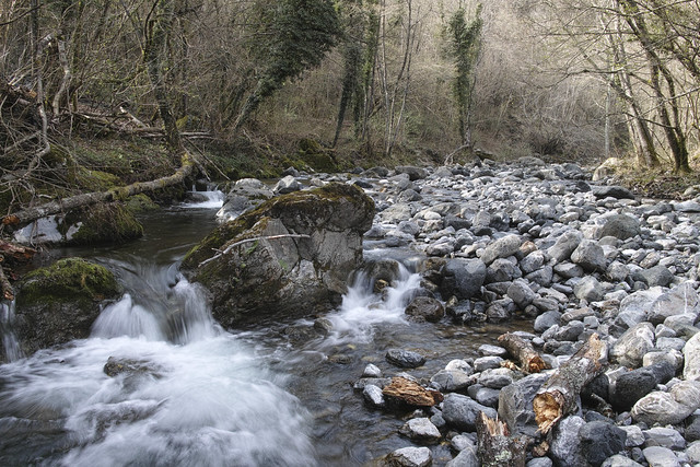Vara river tributary (Liguria, Italy)