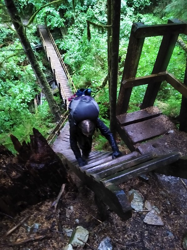 The West Coast Trail had lots of ladders and bridges and ups and downs on the way to Port Renfrew