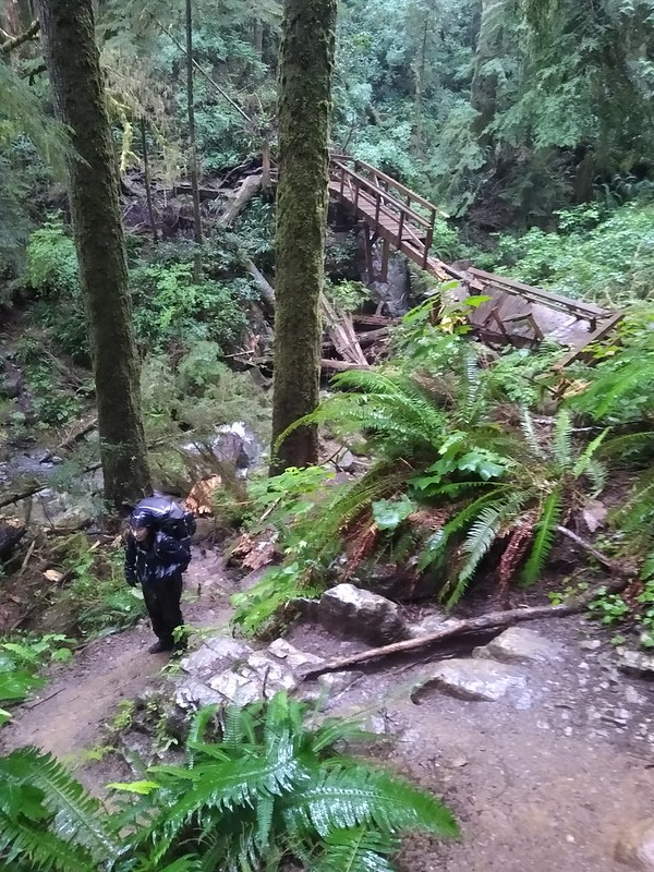This wooden bridge was damaged by a fallen tree so we had to do some difficult climbing to bypass it