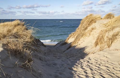 sanddunes dunes dune beach ptown winter cold outside outdoor sand hike hiking outdoors wilderness wild beauty nature natural coast coastal seacoast seashore