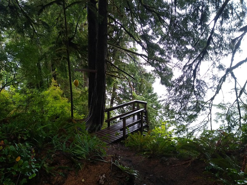 This is the final ladder on the West Coast Trail at Gordon River, with the yellow ball raised for the boat