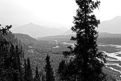 There's Many Opportunities to Survey Grandeur in a National Park (Black & White, Denali National Park & Preserve)