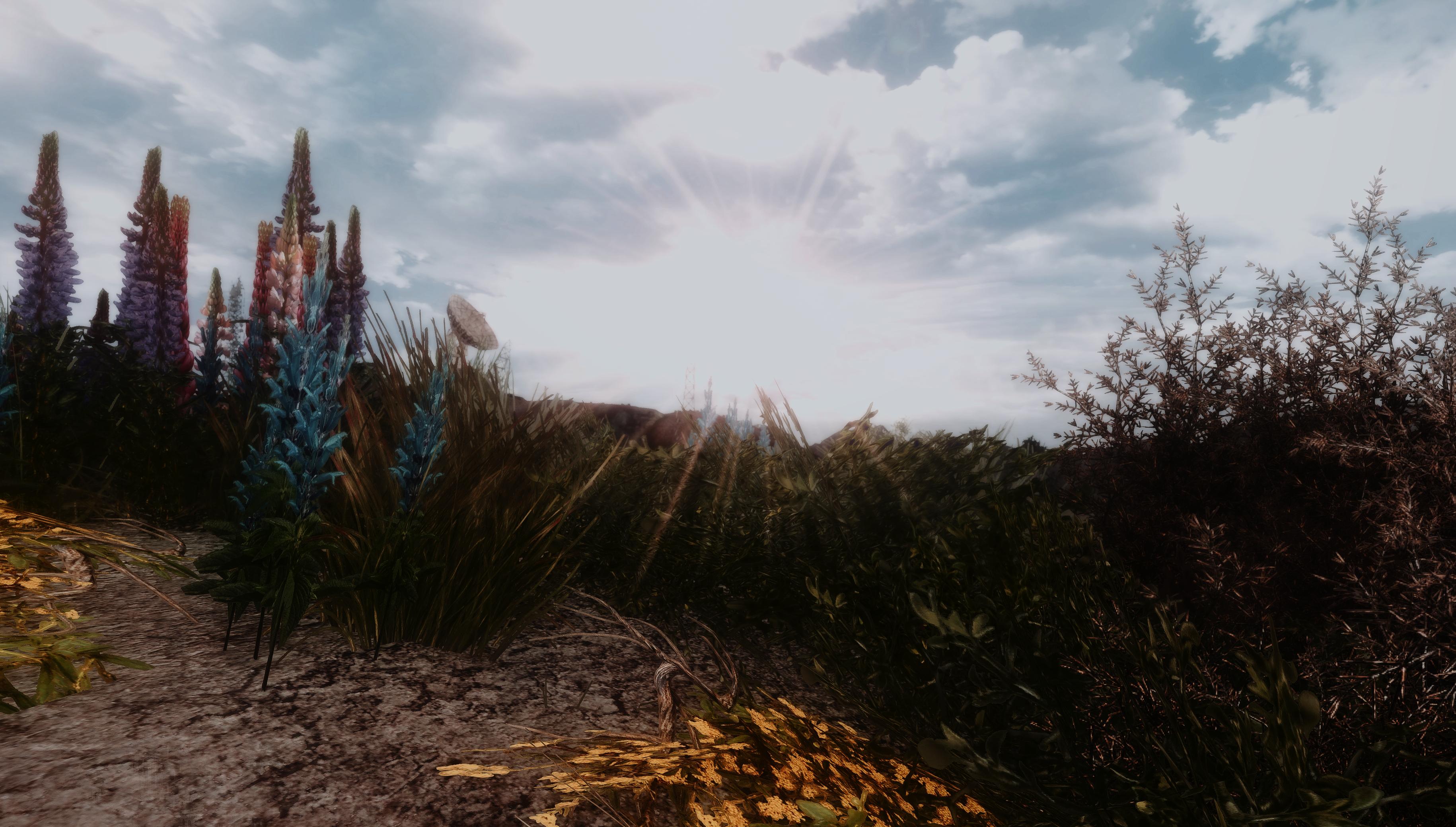 Fallout Screenshots XIV - Page 11 49325376666_0d028685d3_o