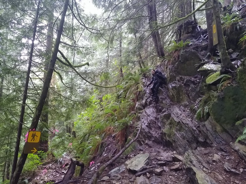 Yes, that horrible rocky wall is actually the West Coast Trail, and it needed signs to make people believe it!