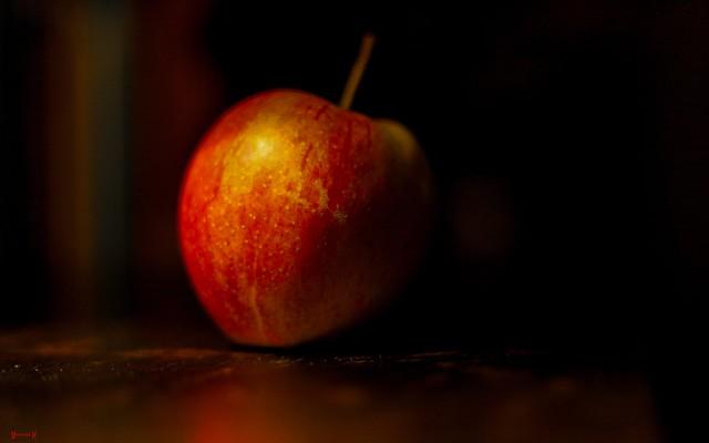 Apple - 7931