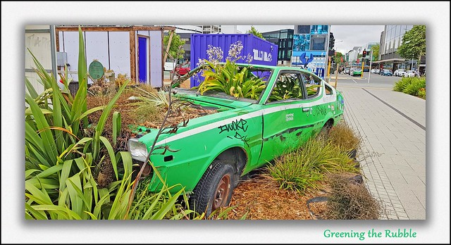 Greening the Rubble, Christchurch