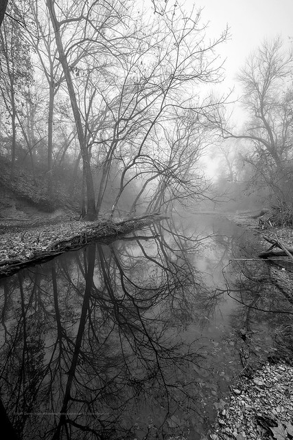 Foggy Winter on the Clear Fork